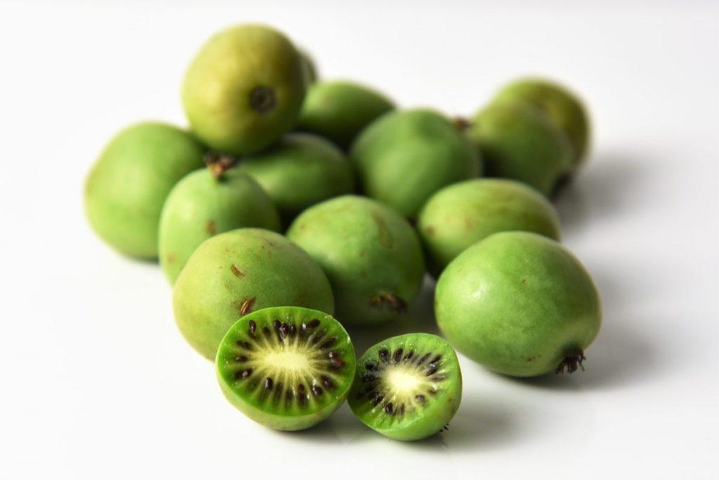 Nergi - Mini-Kiwi