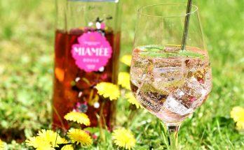 Sommerlicher Cocktail mit Weißwein und MIAMEE Rouge